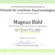 Urkunde exzellente Expertentaetigkeit Magnus_Bühl
